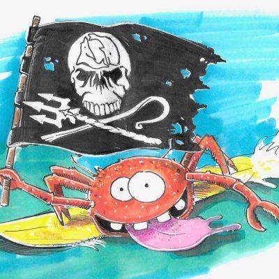 crab-seashepherd